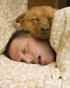 deep sleep 4