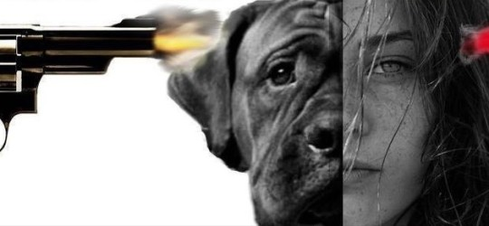 állatok megölése_boriítókép 2
